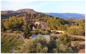The winery- La Perla del Priorat in Spain