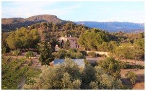 The winery- La Perla del Priorat in Spain