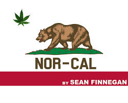Nor-cal by Sean Finnegan